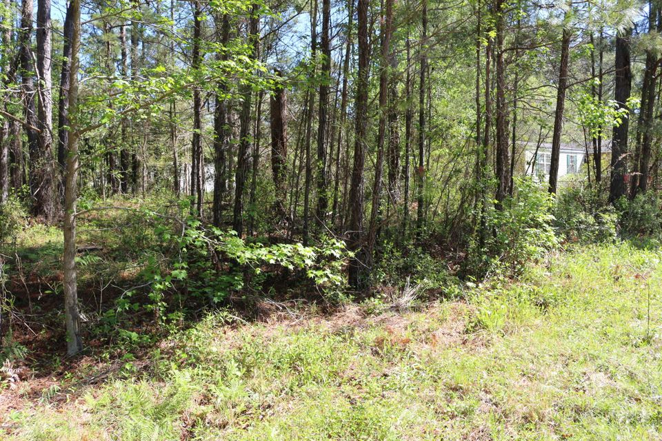 Carolina Plantations Real Estate - MLS Number: 100112521