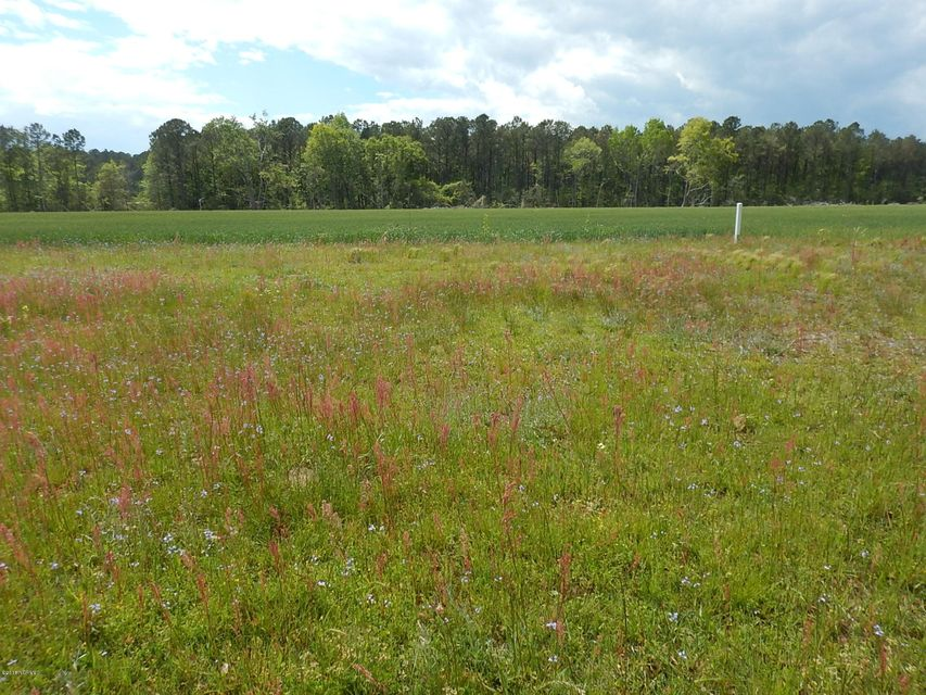 Carolina Plantations Real Estate - MLS Number: 100112771