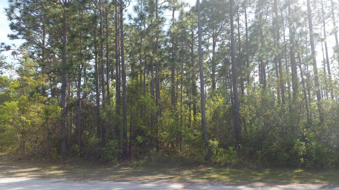Lot 40 Boiling Spring Road,Southport,North Carolina,Wooded,Boiling Spring,100113481
