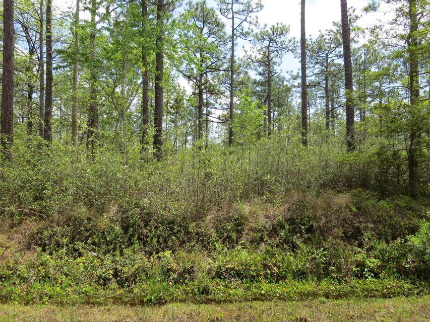 450 Queens Road,Boiling Spring Lakes,North Carolina,Residential land,Queens,100113484