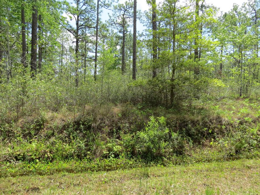 Lot 451 Queens Road,Boiling Spring Lakes,North Carolina,Residential land,Queens,100113495