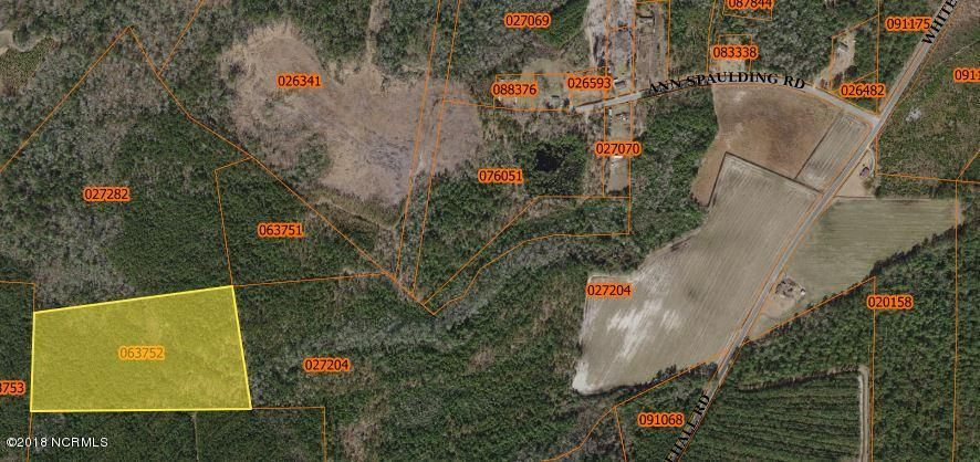 Carolina Plantations Real Estate - MLS Number: 100113569