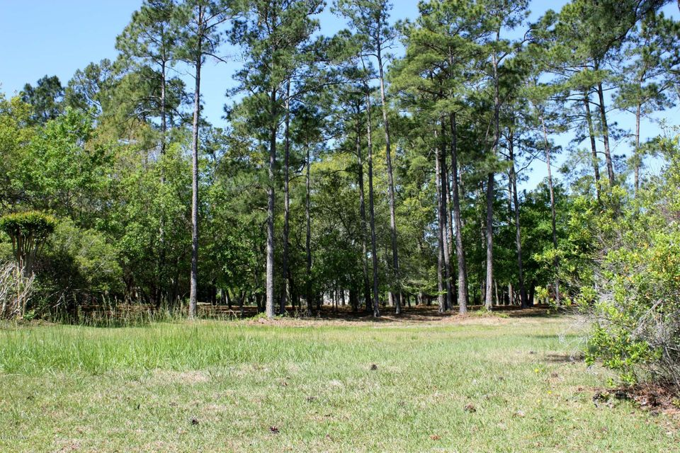 Carolina Plantations Real Estate - MLS Number: 100113900