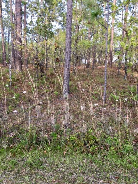 Carolina Plantations Real Estate - MLS Number: 100114016