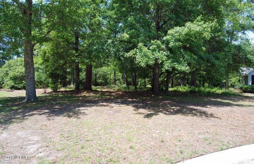 Carolina Plantations Real Estate - MLS Number: 100116466