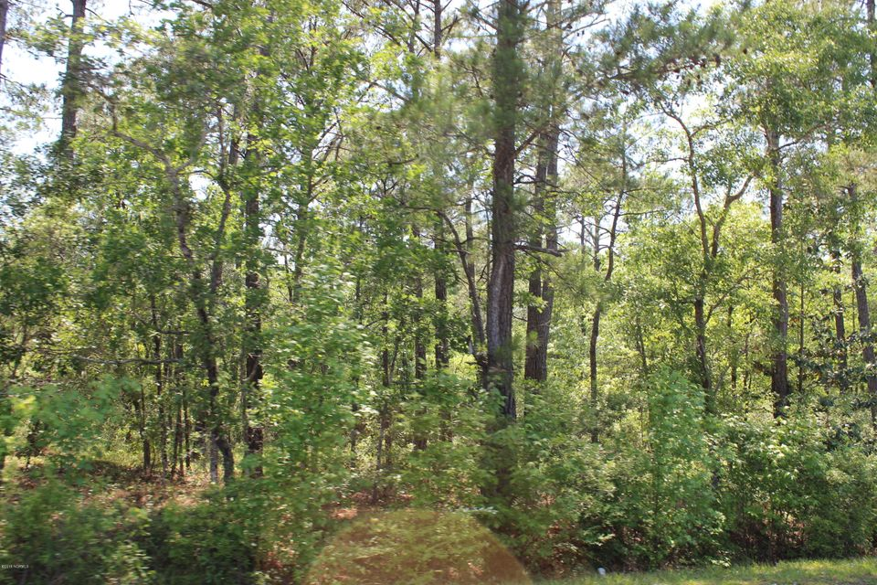 Carolina Plantations Real Estate - MLS Number: 100118549
