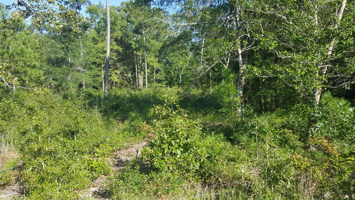 Carolina Plantations Real Estate - MLS Number: 100116413