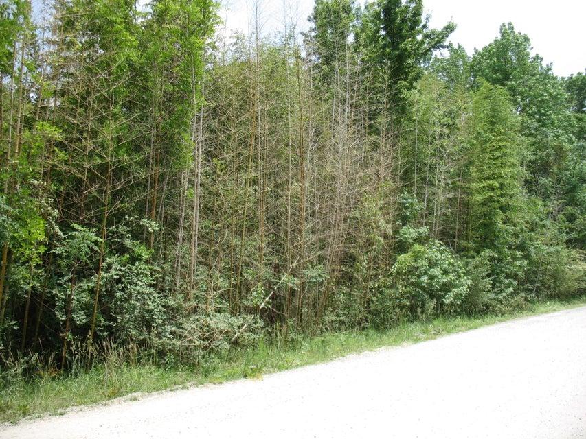 Carolina Plantations Real Estate - MLS Number: 100116447