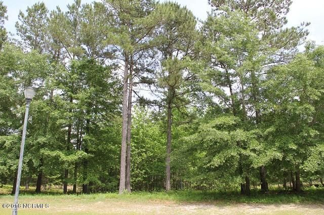 657 Summerhaven Lane,Bolivia,North Carolina,Residential land,Summerhaven,100116671