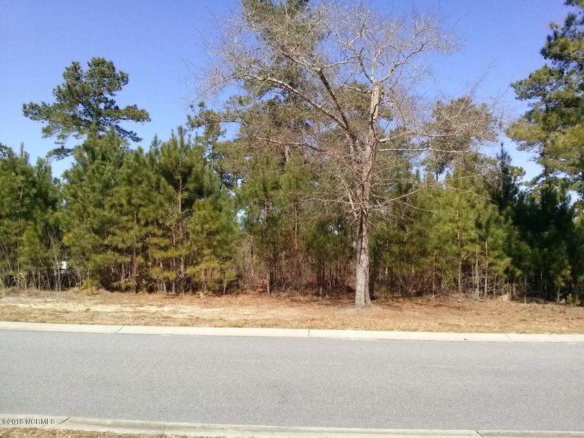 Carolina Plantations Real Estate - MLS Number: 100120278
