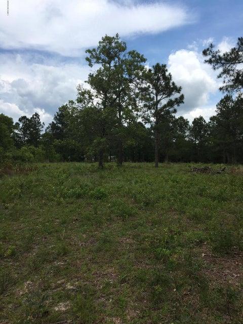 Carolina Plantations Real Estate - MLS Number: 100117169