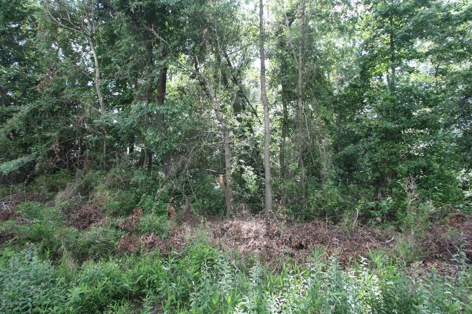 Carolina Plantations Real Estate - MLS Number: 100118061