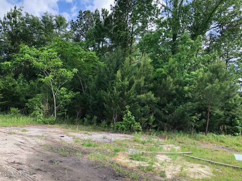 Carolina Plantations Real Estate - MLS Number: 100115757