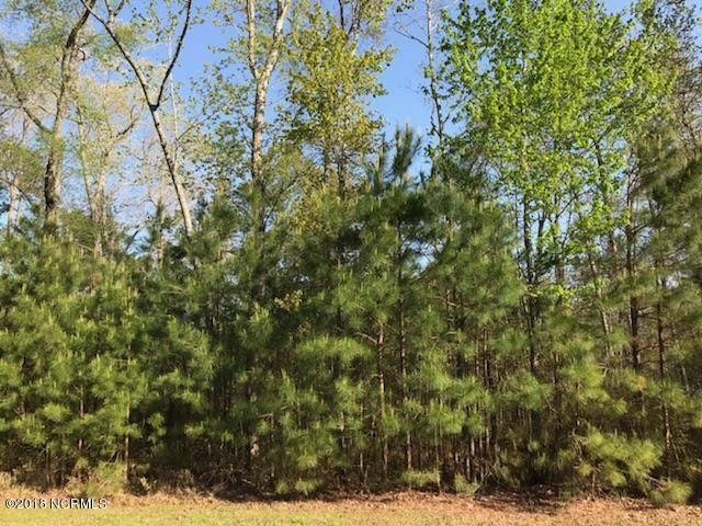 Lot 20 Ashton Drive,Bath,North Carolina,Undeveloped,Ashton,100118449