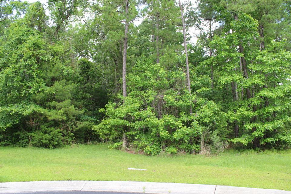 Carolina Plantations Real Estate - MLS Number: 100118826