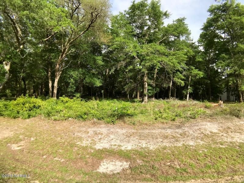 2039 Bluefin Terrace,Supply,North Carolina,Residential land,Bluefin,100119684