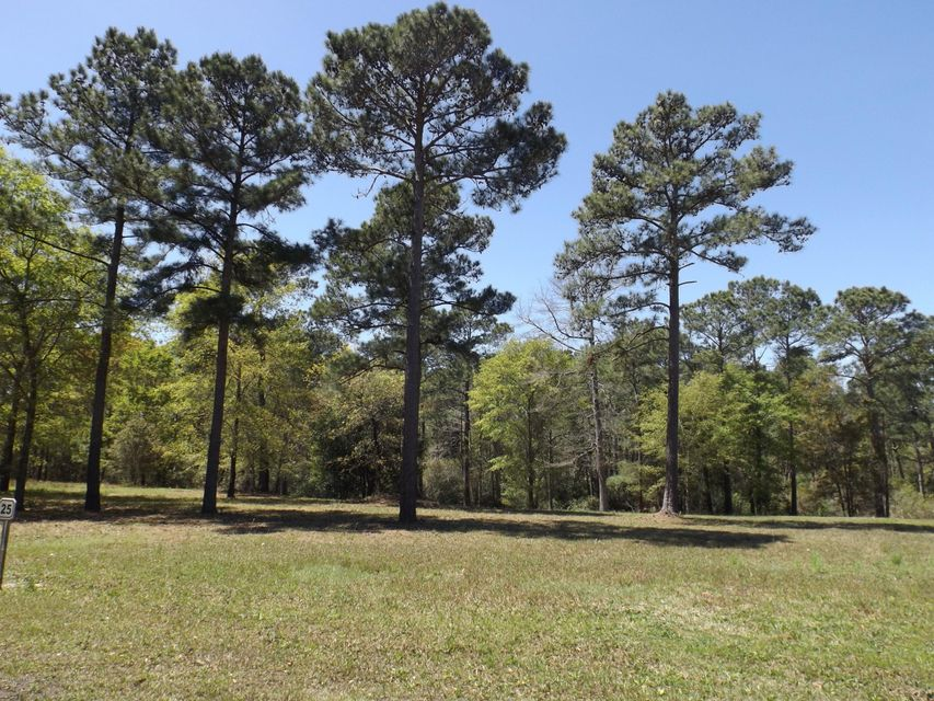 Carolina Plantations Real Estate - MLS Number: 100121931