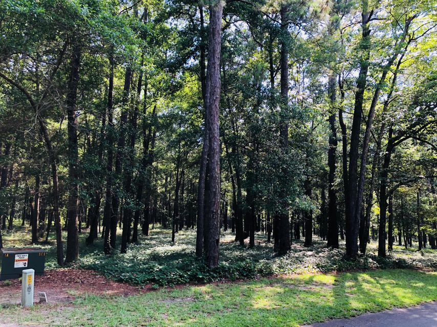 Carolina Plantations Real Estate - MLS Number: 100122218