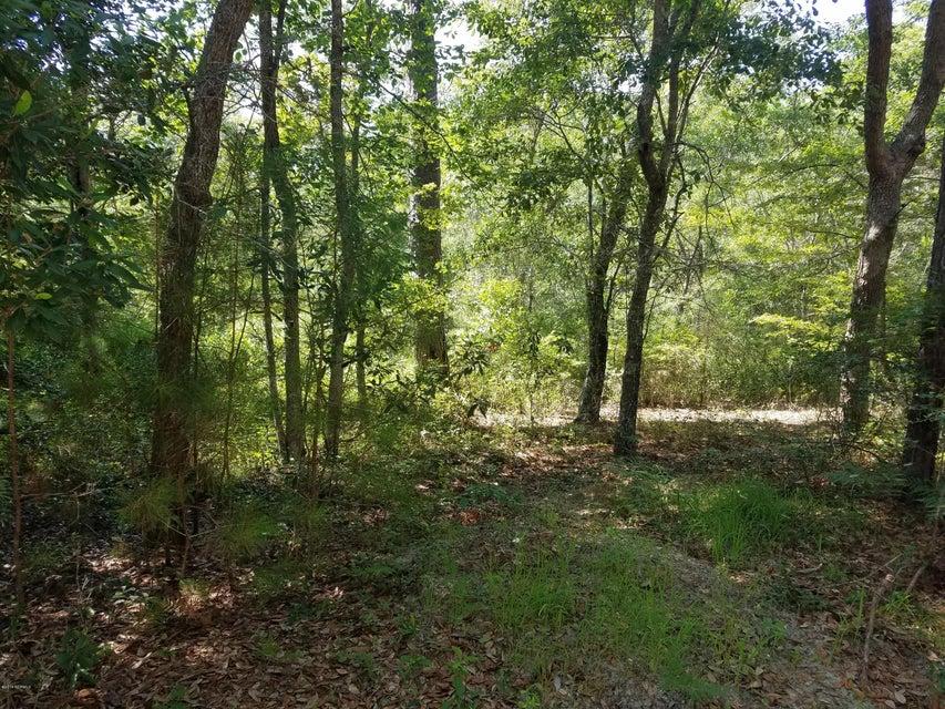 Carolina Plantations Real Estate - MLS Number: 100122794