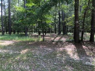 Carolina Plantations Real Estate - MLS Number: 100124182