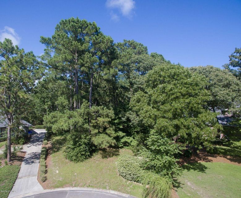 Carolina Plantations Real Estate - MLS Number: 100124305