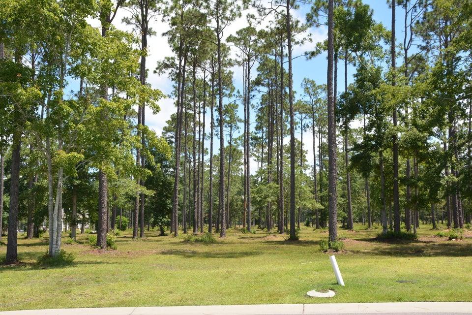 Carolina Plantations Real Estate - MLS Number: 100124550
