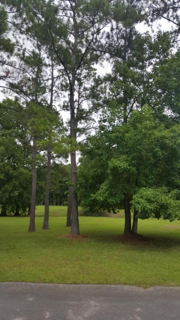 Carolina Plantations Real Estate - MLS Number: 100124742