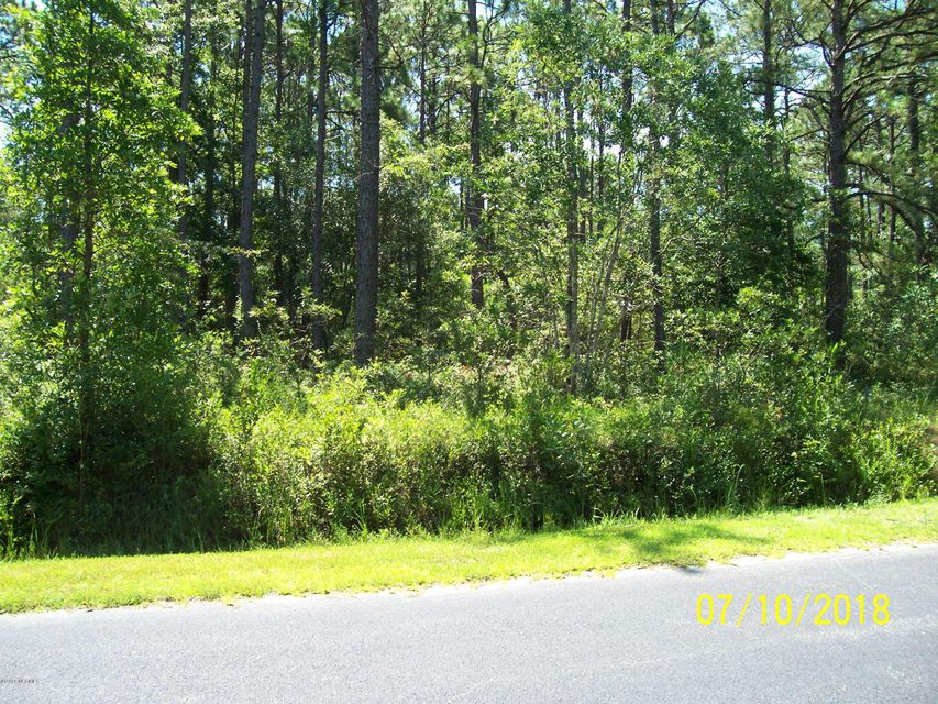 Carolina Plantations Real Estate - MLS Number: 100124673