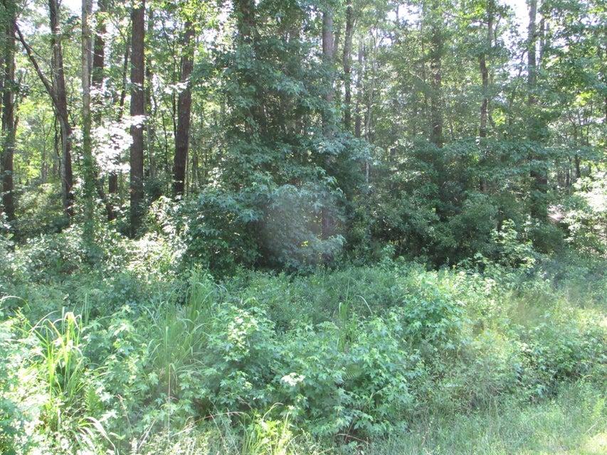 Carolina Plantations Real Estate - MLS Number: 100125074