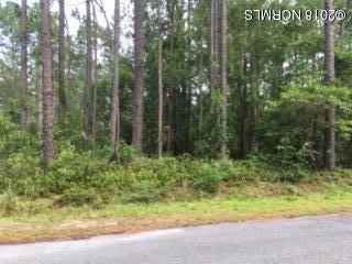 Carolina Plantations Real Estate - MLS Number: 100125115