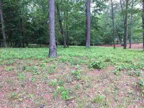 Carolina Plantations Real Estate - MLS Number: 100125246