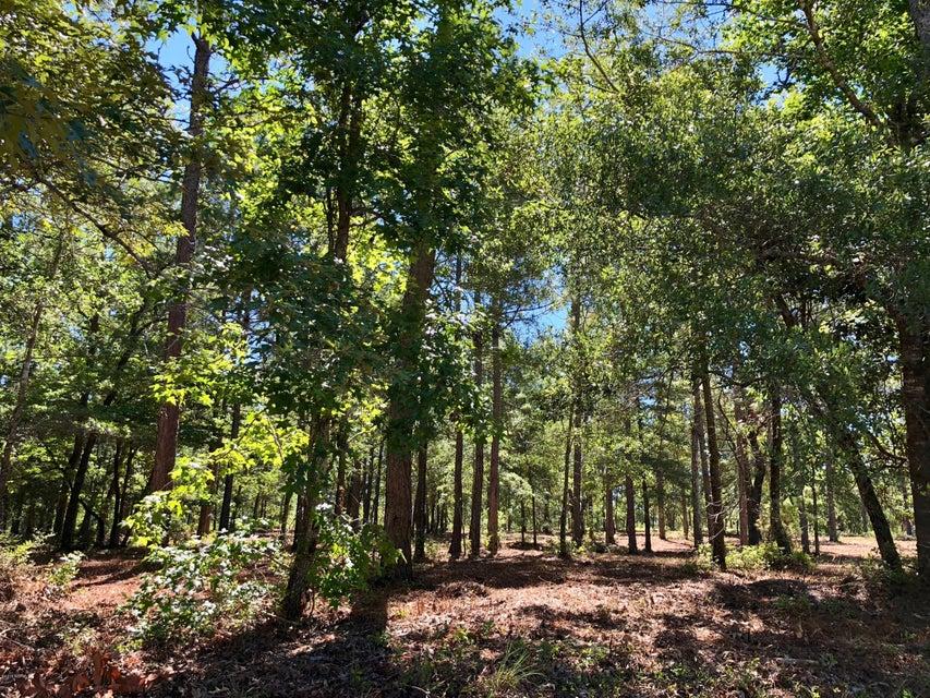 Carolina Plantations Real Estate - MLS Number: 100125449