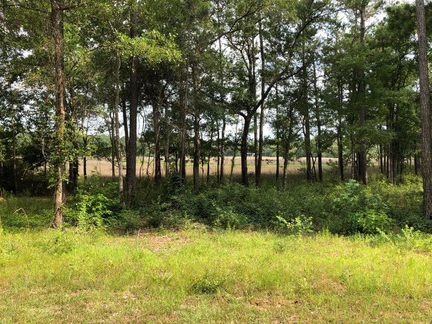 Carolina Plantations Real Estate - MLS Number: 100125554
