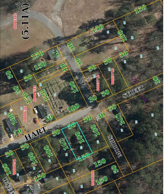 Lot 23 Hart Street,Snow Hill,North Carolina,Wooded,Hart,100126126