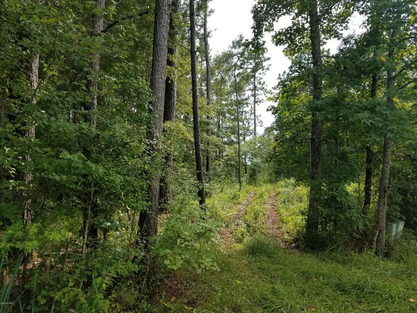Carolina Plantations Real Estate - MLS Number: 100127642