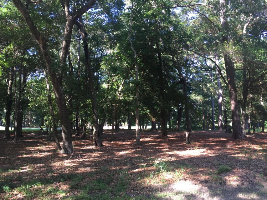 Carolina Plantations Real Estate - MLS Number: 100089781