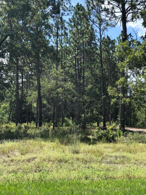 Carolina Plantations Real Estate - MLS Number: 100128708