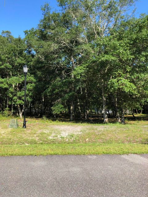2020 Bluefin Terrace,Supply,North Carolina,Residential land,Bluefin,100128986