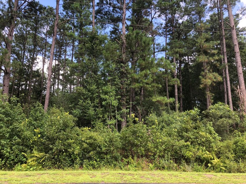 Carolina Plantations Real Estate - MLS Number: 100129187