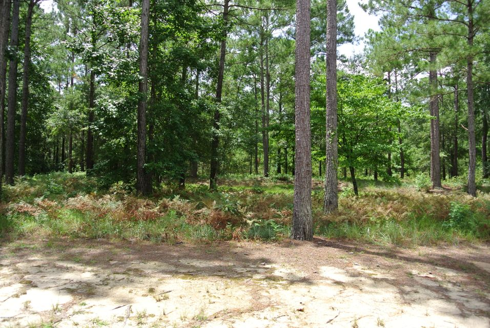 Carolina Plantations Real Estate - MLS Number: 100129702