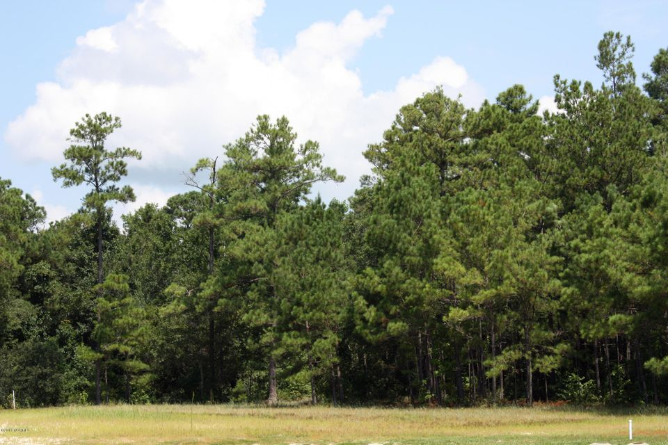 Carolina Plantations Real Estate - MLS Number: 100130037