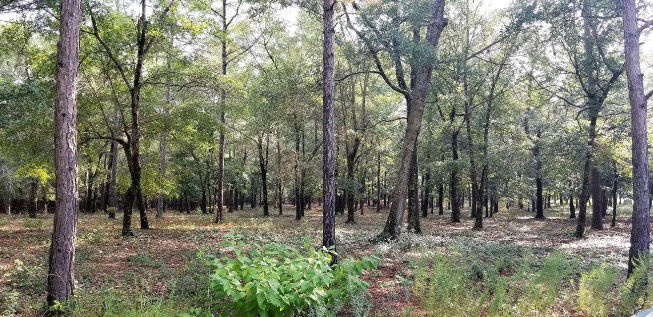 Carolina Plantations Real Estate - MLS Number: 100130533
