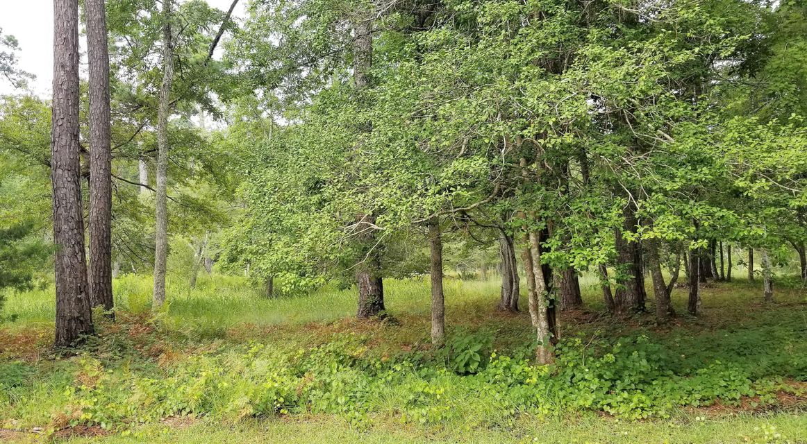 Carolina Plantations Real Estate - MLS Number: 100130581