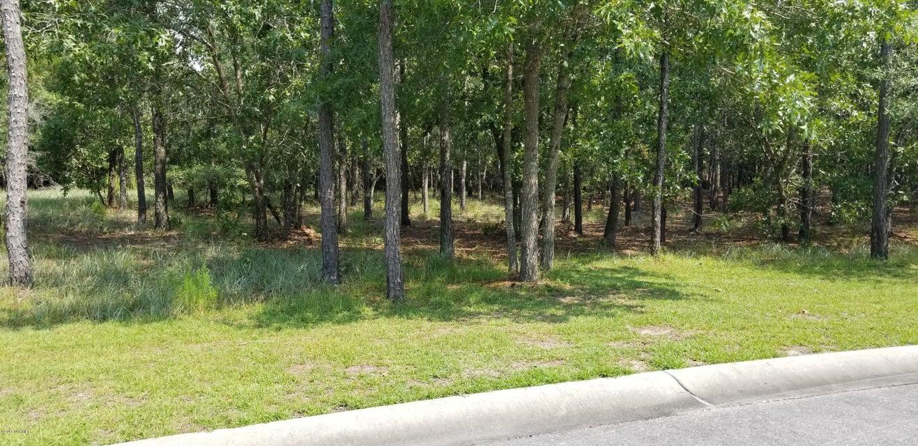 Carolina Plantations Real Estate - MLS Number: 100130857