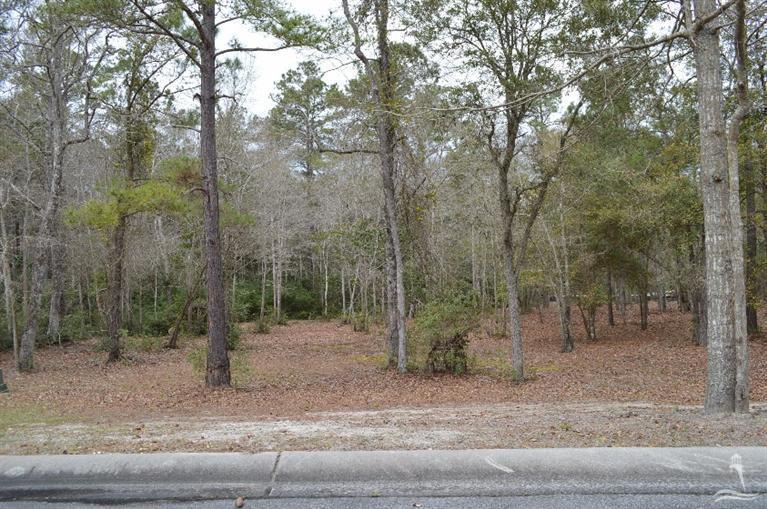 Carolina Plantations Real Estate - MLS Number: 100131278