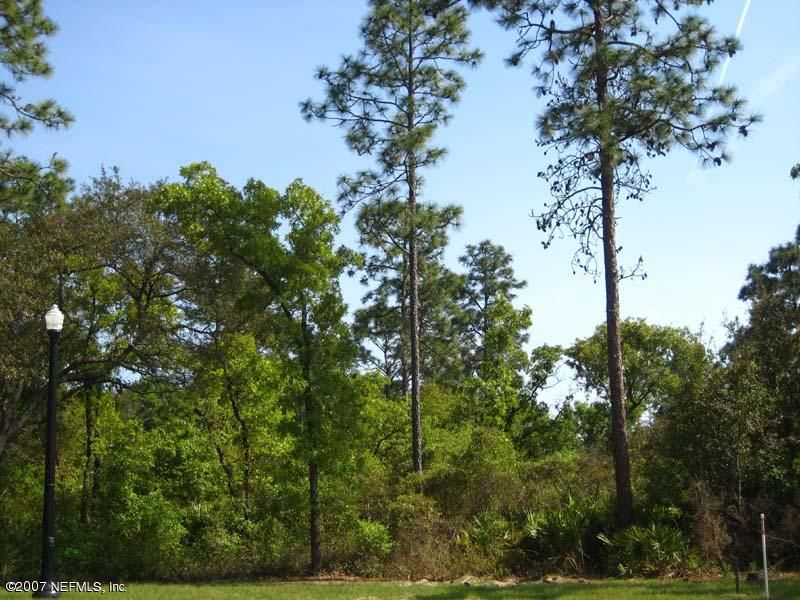 JACKSONVILLE, FLORIDA 32224, ,Vacant land,For sale,496118