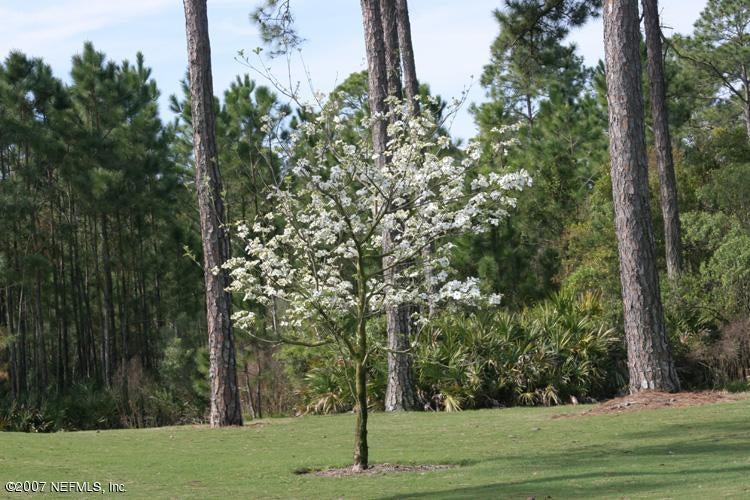 4402 HUNTERSTON,JACKSONVILLE,FLORIDA 32224,Vacant land,HUNTERSTON,531602