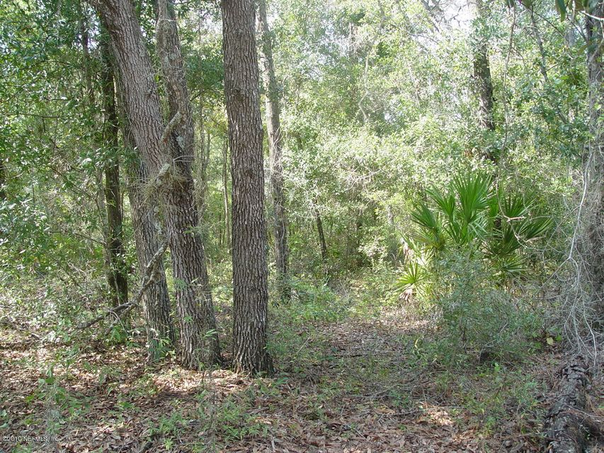 171 Oak Run,CRESCENT CITY,FLORIDA 32112,Vacant land,Oak Run,555695