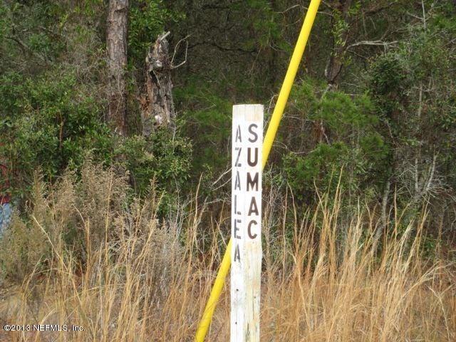118 Sumac,INTERLACHEN,FLORIDA 32148,Vacant land,Sumac,648266