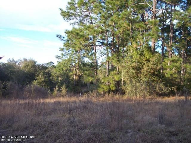 114 PLANTATION,HAWTHORNE,FLORIDA 32640,Vacant land,PLANTATION,706634